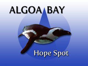 Algoa Bay Hope Spot Logo
