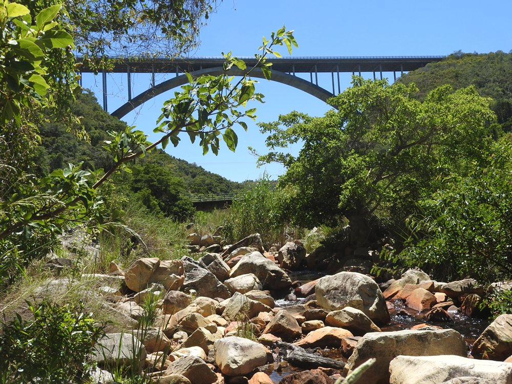 Garden Route Tours South Africa with Alan Tours