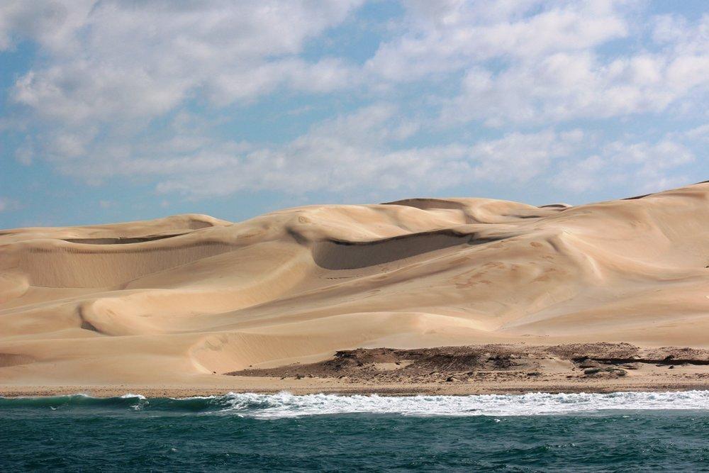 Woody Cape Dune Fields