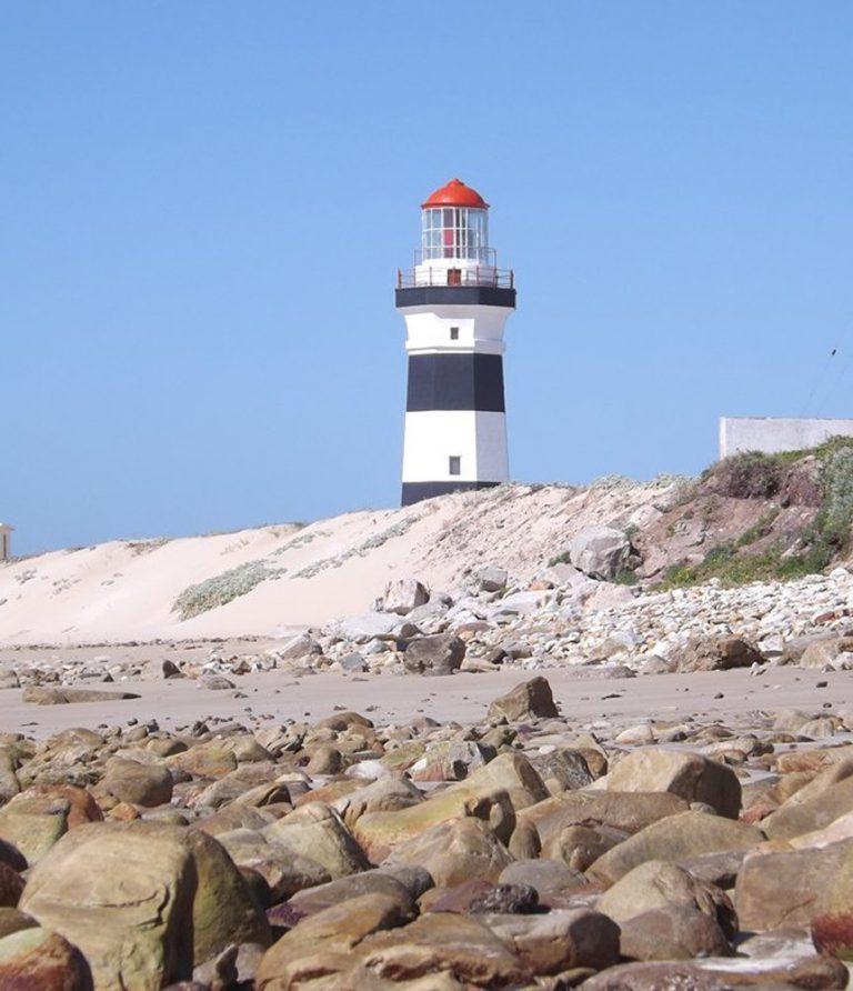 Birdwatching tours Port Elizabeth
