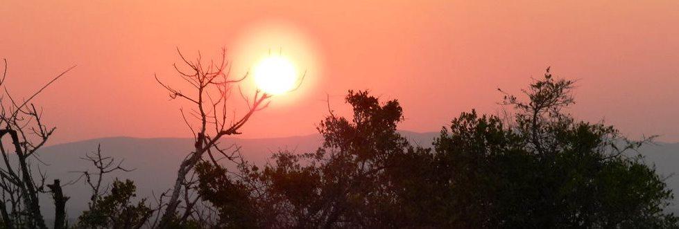 Albertine rift valley, uganda tours with alan tours south africa