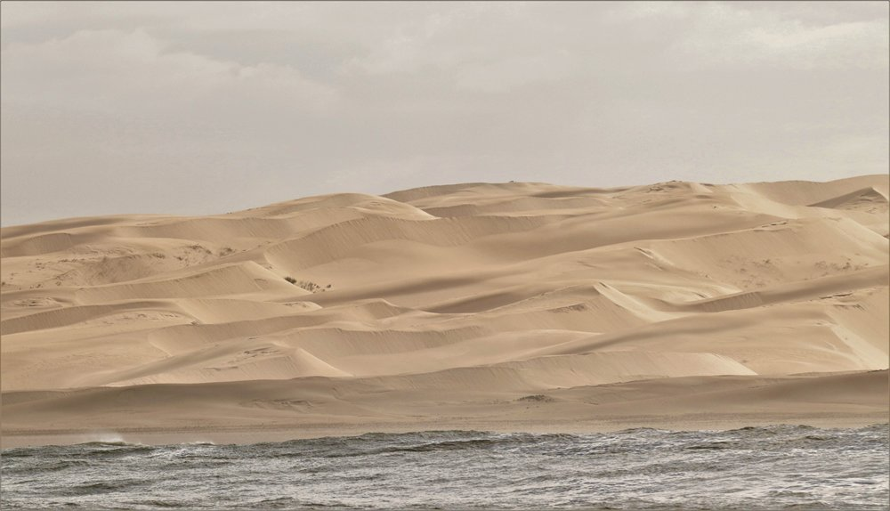 Woody Cape Dunes with Alan Tours