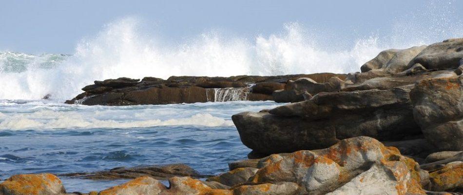 Wildside tours, Port Elizabeth, Eastern Cape, South Africa