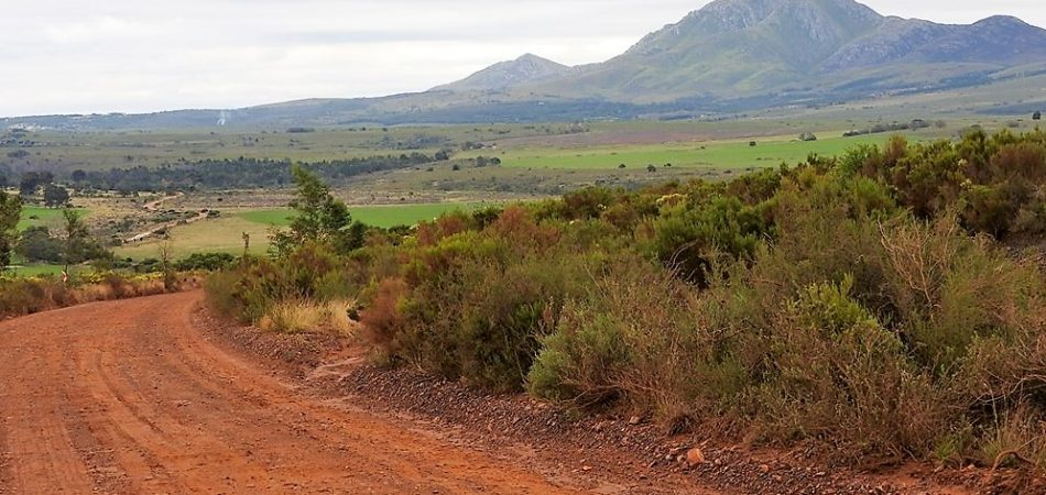 Country Roads Tours South Africa