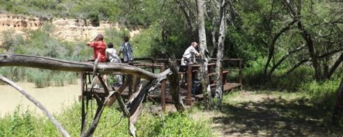 Addo Park Kabouga Section